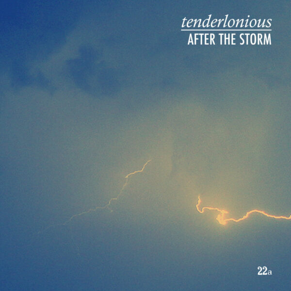 After the Storm Tenderlonious stereodisc
