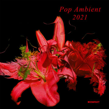 Pop Ambient 2021 stereodisc