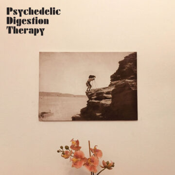 Psychedelic Digestion Therapy stereodisc
